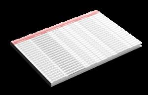 plantilla-analisis-rich-snippets